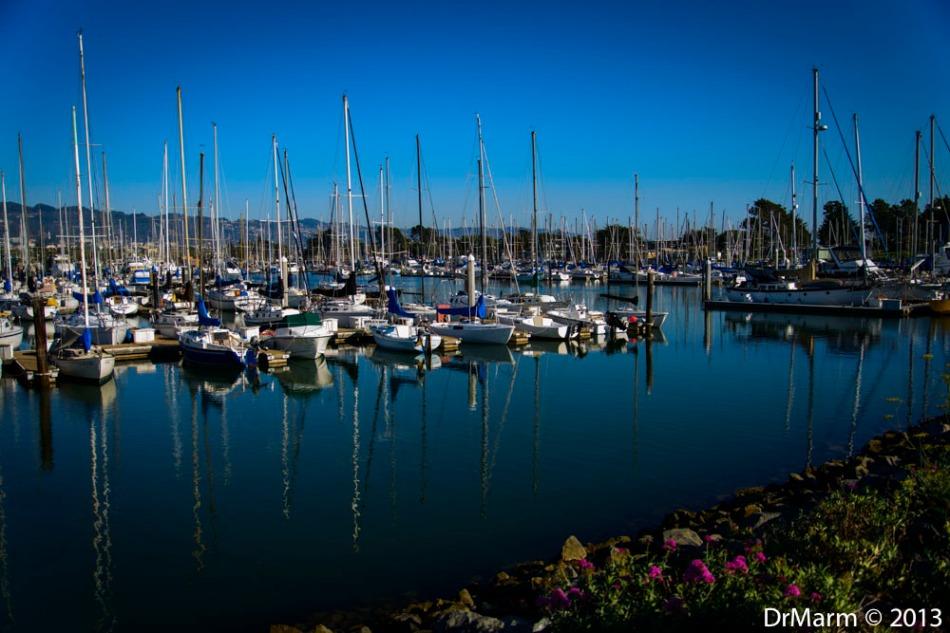 Berkeley Marina