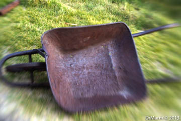Wheelbarrow Day 70