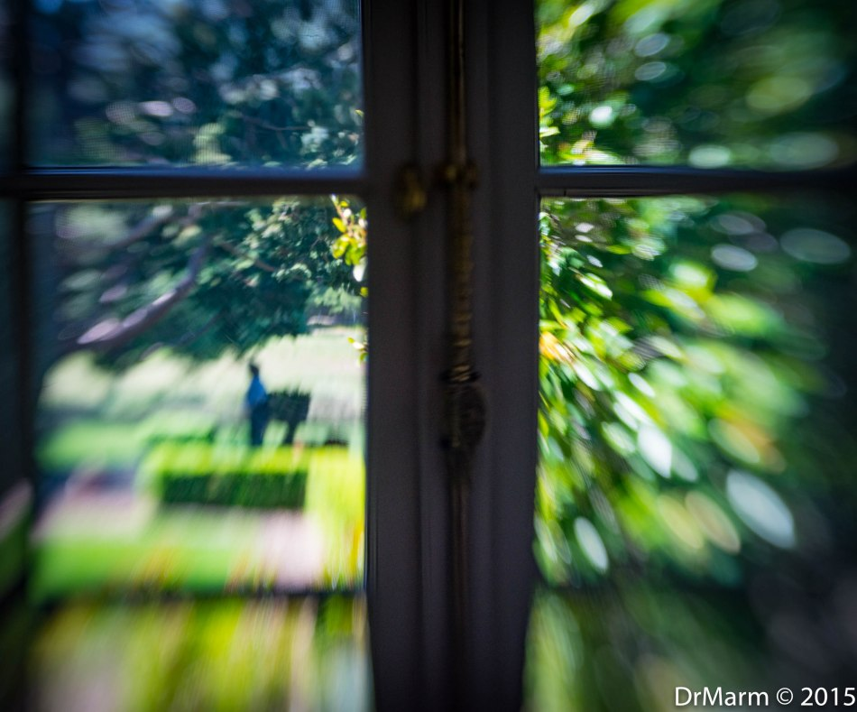 Out the Window Day 73